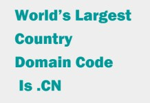 World's Largest Country Domain Code Is .CN