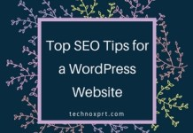 Top SEO Tips for a WordPress Website