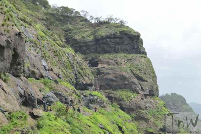 Trek to Vikatgad (10)