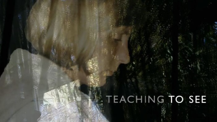 Teaching To See