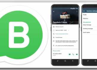 WhatsApp Business app, WhatsApp Business app launched, how to download WhatsApp Business app, whatsapp news, whatsapp for business