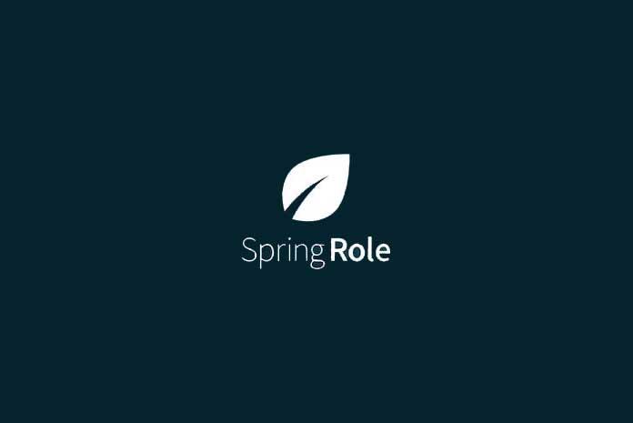 Blockchain based startup SpringRole raises $1.3 million private funding