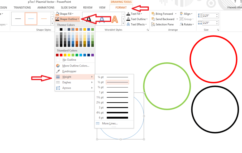 Draw important regions - Plasmid drawing using powerpoint