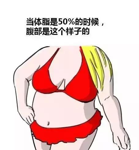 女生體脂率和體型對照