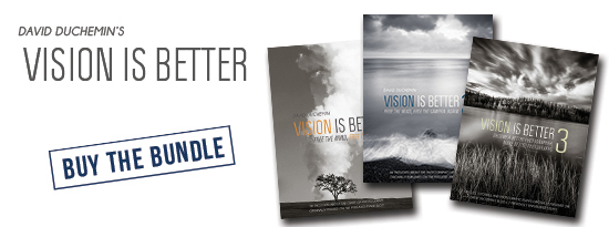 vision-is-better-bundle-header