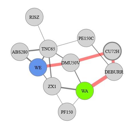 Ergebnis des automatischen Force-Directed-Graph