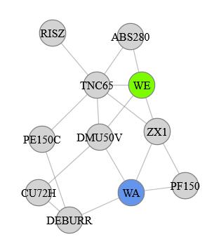 Variante des Force-Directed-Graph mit Layoutpositionierung-Vorschlag