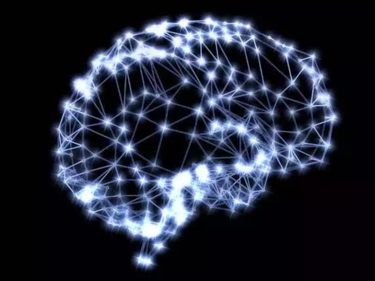 Things Must Know about Coupons and Discounts on Brain Enhancement Supplements