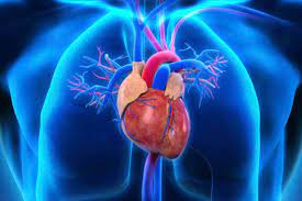 The Dos and Don'ts After Open Heart Surgery