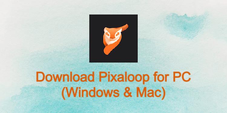 Pixaloop for PC