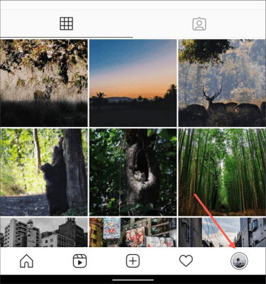 Profile Tab Instagram App
