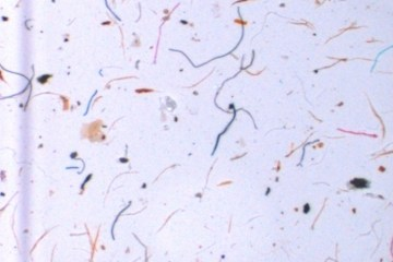microplastics-water