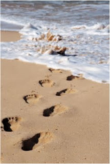 What is Part of Your Digital Footprint?
