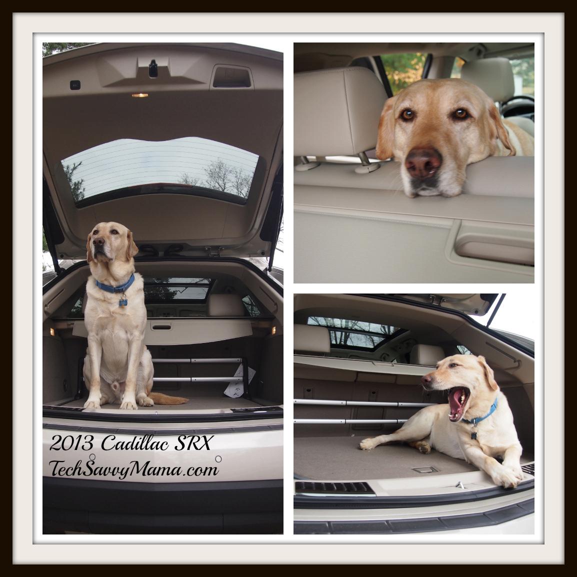 Cadillac 2013 Srx: Cadillac SRX: Luxurious Crossover SUV With An Eye For