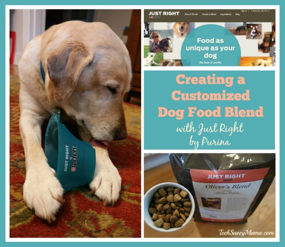 Creating a Customized Dog Food Blend with Just Right By Purina