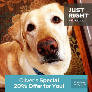 Celebrate National Pet Month with a Discount on Just Right by Purina