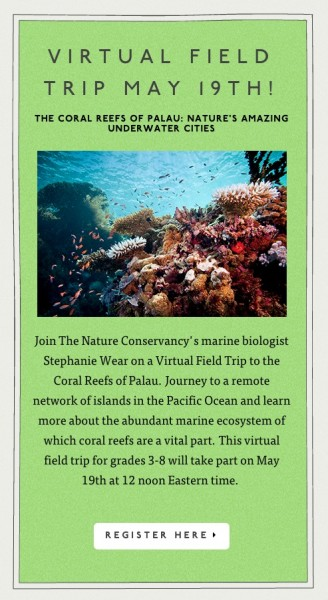 Virtual Field Trip to Palau's Coral Reefs with Nature Works Everywhere
