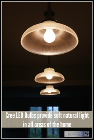 Cree LED Bulbs provide soft natural lights in all areas of the home.