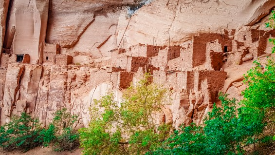 Betatakin ledge houses at Navajo National Monument, AZ © 2015, Leticia Barr All Rights Reserved