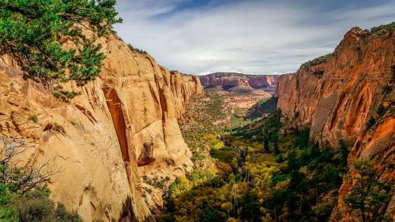 Tsegi Canyon Walls, Navajo National Monument, AZ © 2015, Leticia Barr All Rights Reserved