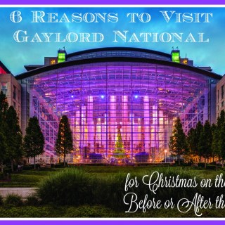 6 Reasons to Visit Gaylord National for Christmas on the Potomac Before & After the Holidays