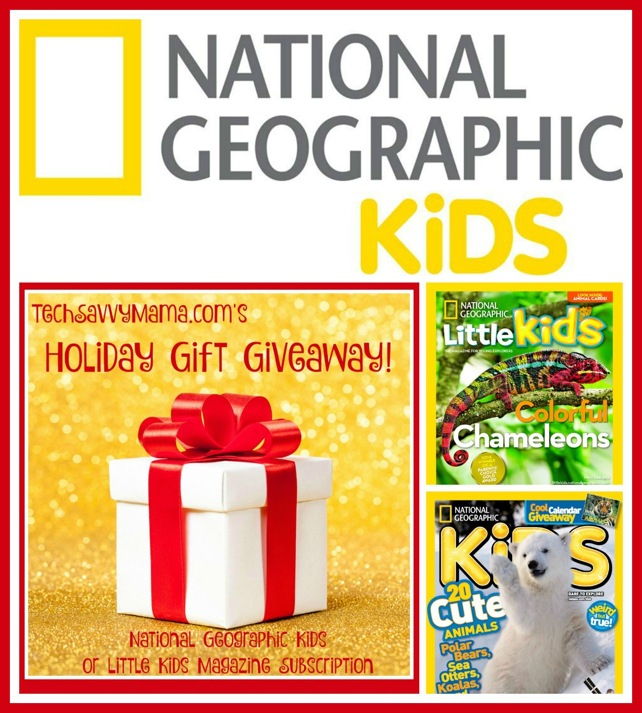GIVEAWAY: National Geographic Kids Or Little Kids Magazine