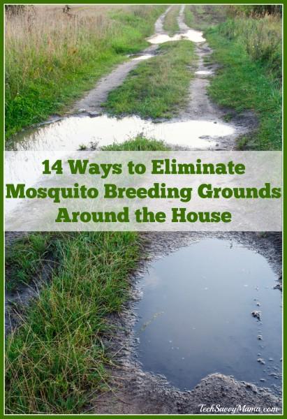 14 Ways to Eliminate Mosquito Breeding Grounds Around the House on TechSavvyMama.com