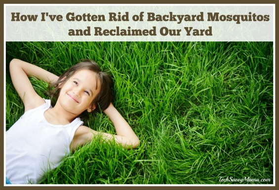 How I've Gotten Rid of Backyard Mosquitos and Reclaimed Our Yard on TechSavvyMama.com