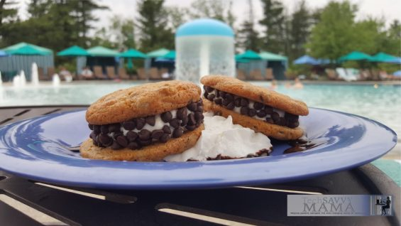 9 Reasons to Visit Hersheypark: Good Excuse to Satisfy Your Chocolate Fix and 8 more reasons on TechSavvyMama.com