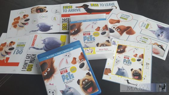 5 Steps to Having a Fun Family Movie Night with The Secret Life of Pets: Blu-ray/DVD Combo Pack Target Exclusive details on TechSavvyMama.com