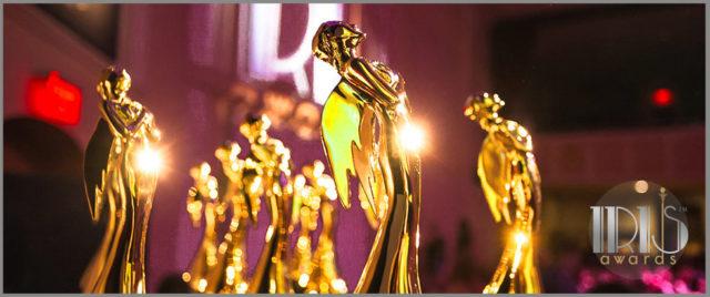 So Um… I Won the Iris Award for Mom Blog of the Year!