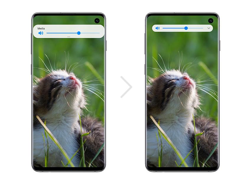 Samsung-One-UI-Beta-Program_Cat_S10_full-screen