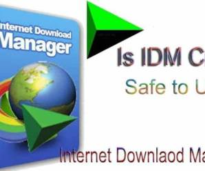 Crack Internet Download Manager (IDM) 6.35 build 5