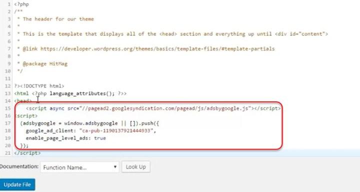 Paste Google AdSense codes