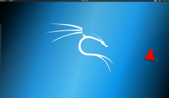 How to Install Kali Linux 2020 on a Laptop PC