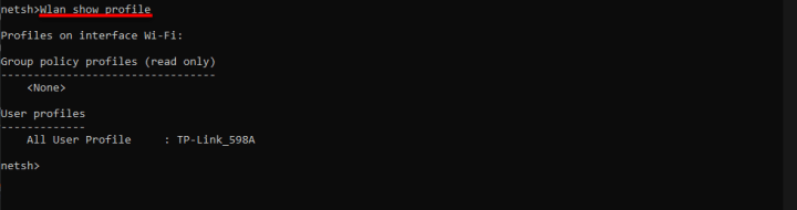 Type WLAN show profile
