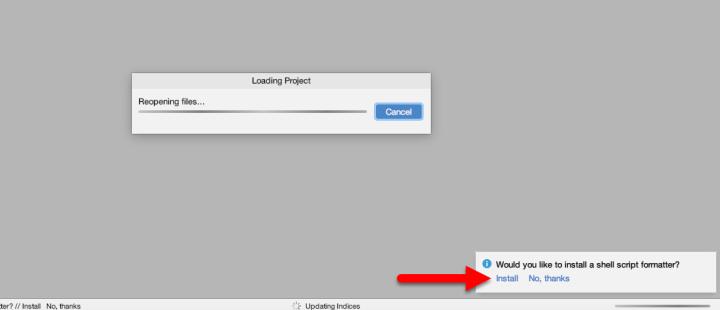 Install script formatter