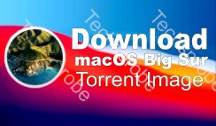 Download macOS Big Sur Torrent Image - [Latest Version]