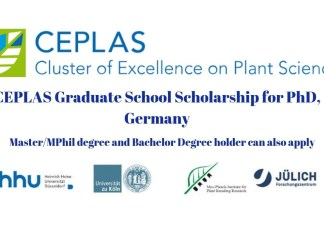 CEPLAS Graduate School