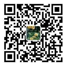 客服微信-5