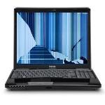 avoiding the 5 most common laptop mishaps