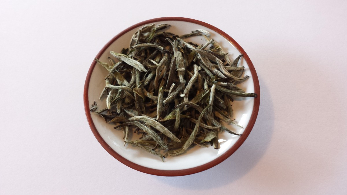 Bai Hao Yin Zhen (Silver Needle) tea from SevenCups.com