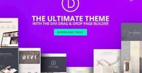 The Most Popular Word Press Themes Divi Free Download