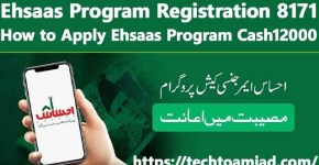 Ehsaas Program Registration 8171 – How to Apply Ehsaas Program Cash12000