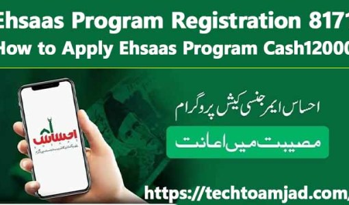 Ehsaas Program Registration 8171 – How to Apply Ehsaas Program Cash12000