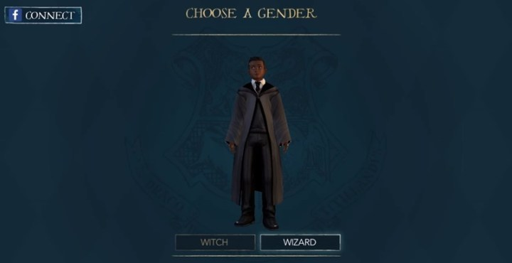 download Harry Potter Hogwarts Mystery for pc