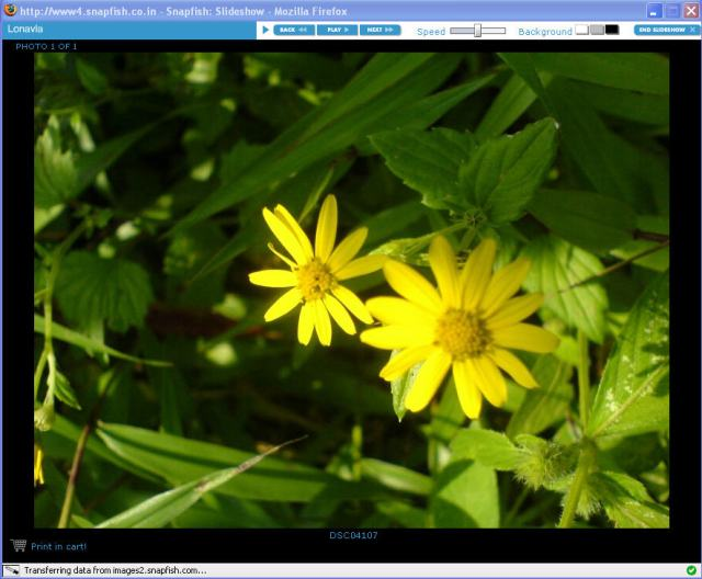 snapfish slideshow