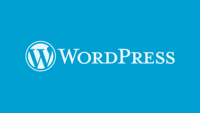 Photo of Infographic: 14 WordPress Support Services to make your site more effective