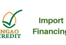 Ngao credit import financing Kenya