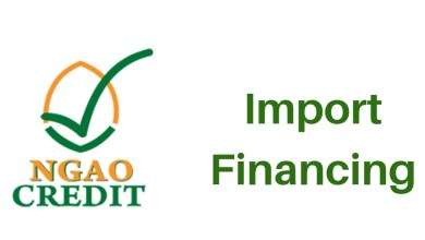 Photo of Ngao Credit: Guide To Our Import Financing